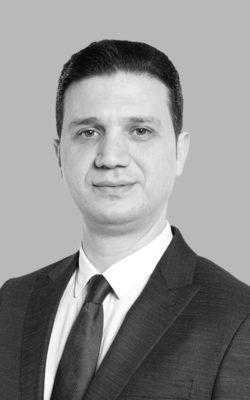 Mehmet Ali SELMANİ