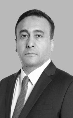 Mehmet Rıdvan ARSLAN